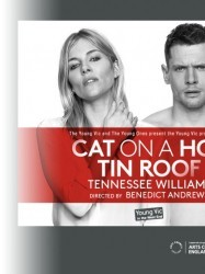 Cat On A Hot Tin Roof at Chequer Mead, East Grinstead