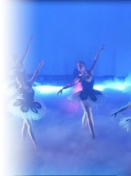 C.T.A Modern and Choreographic Display  at Chequer Mead, East Grinstead
